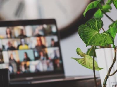 Laptop videoconference with plant next to computer