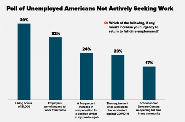Chart showing Americans not seeking work– Remote Report