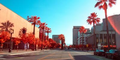 San Jose California– Remote Report